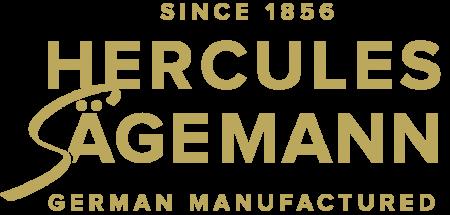 HS_Logo_gold